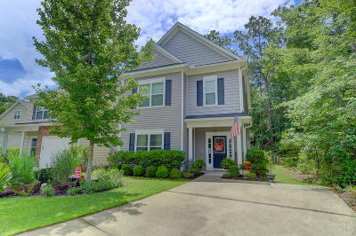 Johns Island Single Family Home For Sale: 2807 Pottinger Drive