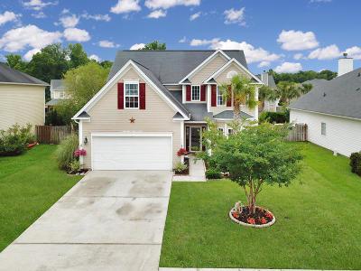 Summerville Single Family Home For Sale: 1034 Sterling Lane