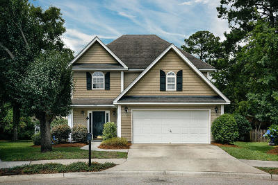 Charleston Single Family Home For Sale: 902 Pleasant Cove Court
