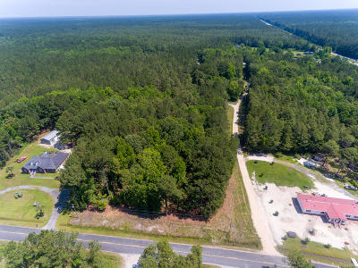 Awendaw Residential Lots & Land For Sale: 1158 Porcher School Road