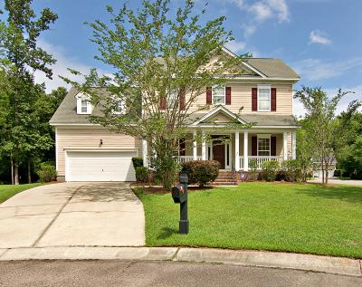 Summerville Single Family Home For Sale: 121 Blackwater Drive