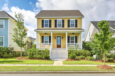 Berkeley County, Charleston County Single Family Home For Sale: 1839 Village Crossing Drive