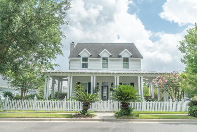 Summerville Single Family Home For Sale: 102 Wrigley Boulevard
