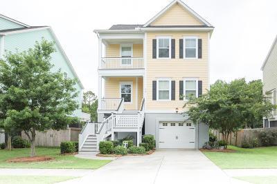 Berkeley County Single Family Home For Sale: 467 Sanders Farm Lane