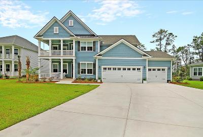 Charleston County Single Family Home For Sale: 2793 Summertime Lane