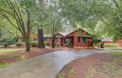 Berkeley County, Charleston County, Colleton County, Dorchester County Single Family Home For Sale: 4349 Cloudmont Drive