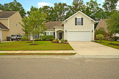 Summerville Single Family Home For Sale: 9673 Islesworth Way