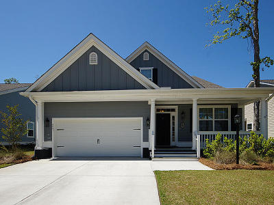 Charleston County Single Family Home For Sale: 4841 8th Tee Drive