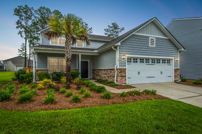 Moncks Corner Single Family Home For Sale: 155 Waccamaw Circle