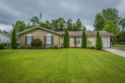 Moncks Corner Single Family Home For Sale: 1003 Mountain Pine Road