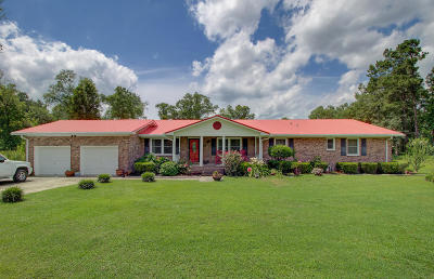 Berkeley County Single Family Home For Sale: 1561 Thirty Five Mile Road