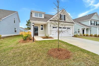 Dorchester County Single Family Home For Sale: 259 McClellan Way