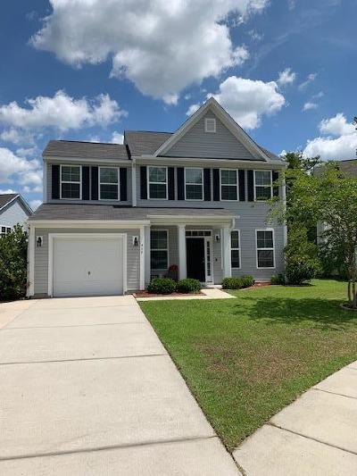 Single Family Home For Sale: 442 Village Park Drive