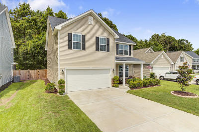 Charleston County Single Family Home For Sale: 5068 Wapiti Way
