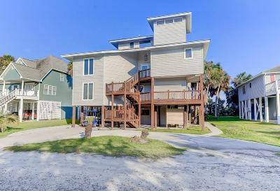Edisto Island Single Family Home For Sale: 608 Pompano Street