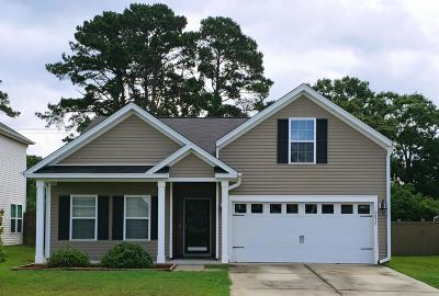 Berkeley County Single Family Home For Sale: 3036 Adventure Way