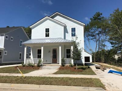 Berkeley County, Charleston County, Colleton County, Dorchester County Single Family Home For Sale: 321 West Respite Lane