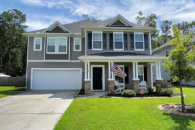 Berkeley County Single Family Home For Sale: 176 Charlesfort Way
