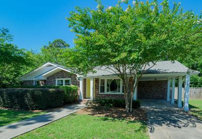 Charleston County Single Family Home For Sale: 779 Jim Isle Drive Drive