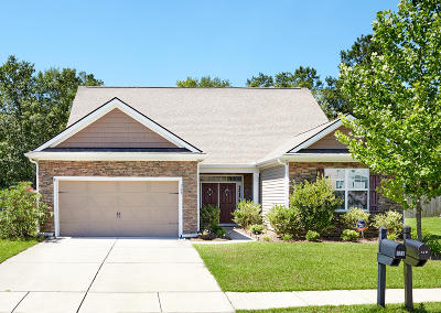 Berkeley County Single Family Home For Sale: 129 Carolina Wren Avenue