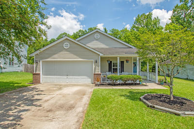 North Charleston Single Family Home For Sale: 8067 Old London