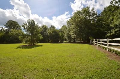 Berkeley County Single Family Home For Sale: 115 Flag Way
