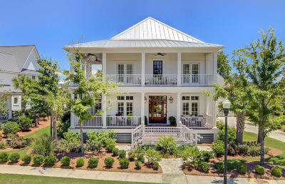 Charleston Single Family Home For Sale: 135 Brailsford Street