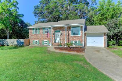 Charleston Single Family Home For Sale: 1037 Honeysuckle Lane