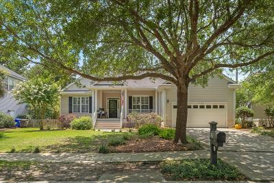Mount Pleasant Single Family Home For Sale: 1231 Palmetto Peninsula Drive