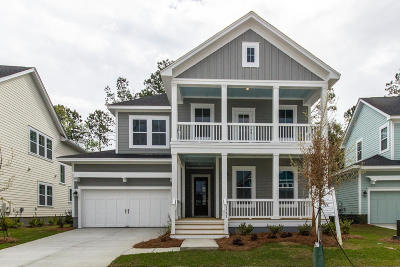 Mount Pleasant SC Single Family Home For Sale: $649,311