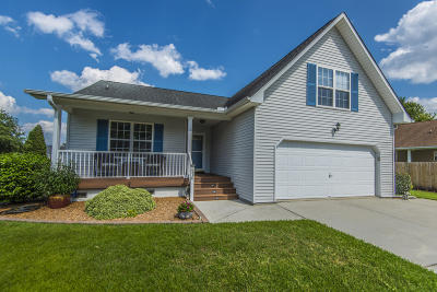 Goose Creek Single Family Home For Sale: 210 Cane Break Lane