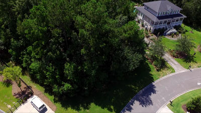 Mount Pleasant SC Residential Lots & Land For Sale: $228,900
