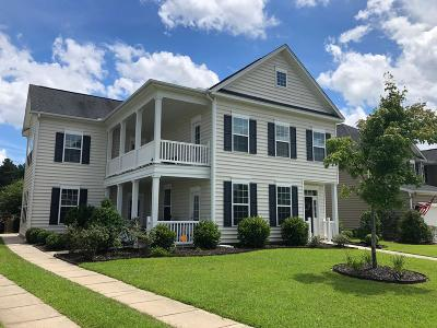 Summerville Single Family Home For Sale: 233 Berwick Drive