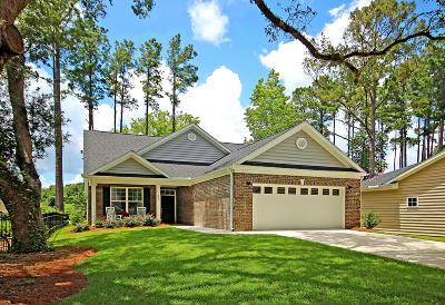 Single Family Home Contingent: 205 Brutus Lane