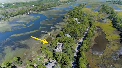 Kiawah Island Single Family Home For Sale: 42 Salt Cedar Lane