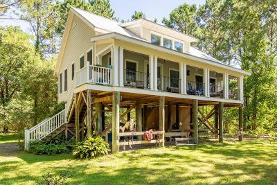 Berkeley County, Charleston County, Dorchester County, Colleton Single Family Home For Sale: 464 Pinckney Street