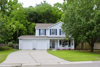 Charleston Single Family Home For Sale: 189 Droos Way