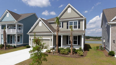 Berkeley County, Charleston County, Colleton County, Dorchester County Single Family Home For Sale: 228 Seaworthy Street