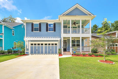 Summerville Single Family Home For Sale: 110 Evelyn Joy Drive