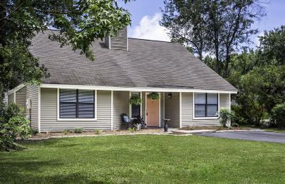 Mount Pleasant Single Family Home For Sale: 1123 Daffodil Lane