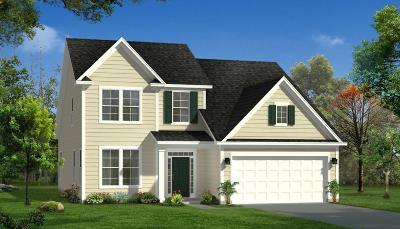 Moncks Corner Single Family Home For Sale: 9a Sugeree Drive