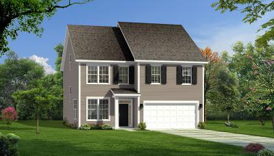 Moncks Corner Single Family Home For Sale: 9c Sugeree Drive