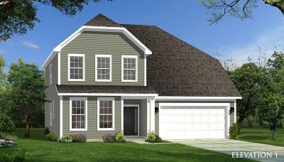 Moncks Corner Single Family Home For Sale: 9d Sugeree Drive