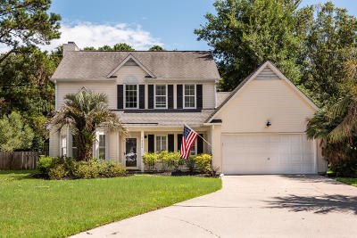 Mount Pleasant Single Family Home For Sale: 1952 Oak Tree Lane