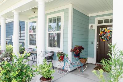 Summerville Single Family Home For Sale: 357 Whispering Breeze Lane