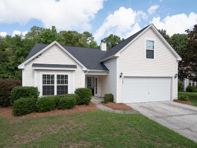 Mount Pleasant Single Family Home For Sale: 3383 Lindner Lane