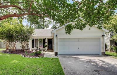 Mount Pleasant Single Family Home For Sale: 348 Kingston Lane