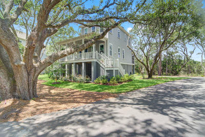 Charleston Single Family Home For Sale: 1480 Eutaw Battalion Drive