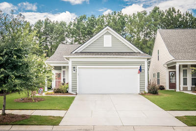 Summerville Single Family Home For Sale: 513 Eastern Isle Avenue