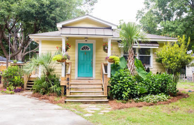 Mount Pleasant Single Family Home For Sale: 844 Toler Drive